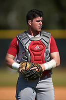 Indiana Hoosiers catcher Ryan Fineman (29) during practice before a game against the Illinois State Redbirds on March 4, 2016 at North Charlotte Regional Park in Port Charlotte, Florida.  Indiana defeated Illinois State 14-1.  (Mike Janes/Four Seam Images)