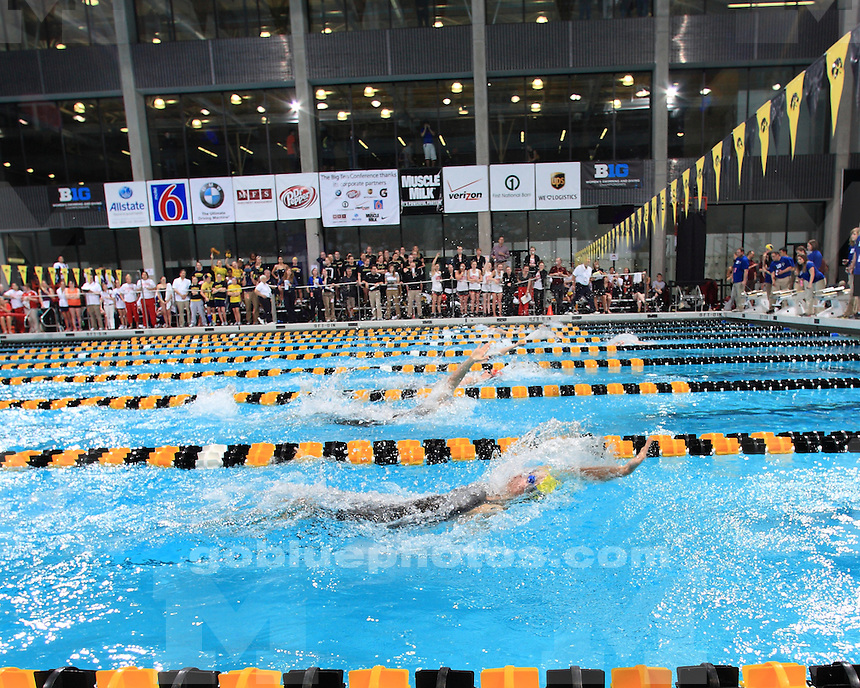 The University of Michigan's women's swimming and diving team competes in the 2012 Big Ten Championships in Iowa City, Iowa, on February 17, 2012.