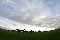 Riders come down the finishing straight as the sun sets on the Frimstone Standard Open National Hunt Flat Race