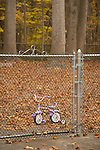 The Learning Tree. Lone tricycle on playground behind chain link fence.