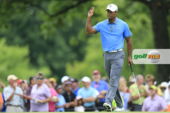 Tiger Woods (USA) sinks his birdie putt on the 13th green during Friday's Round 1 of the 2013 Bridgestone Invitational WGC tournament held at the Firestone Country Club, Akron, Ohio. 2nd August 2013.<br /> Picture: Eoin Clarke www.golffile.ie