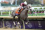 November 2, 2018: Jaywalk #7, ridden by Joel Rosario, wins the Tito's Handmade Vodka Juvenile Fillies on Breeders' Cup World Championship Friday at Churchill Downs on November 2, 2018 in Louisville, Kentucky. Eric Patterson/Eclipse Sportswire/CSM