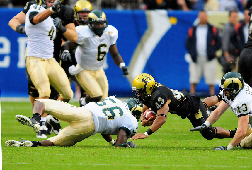 31 Aug 2008: Colorado tailback Rodney Stewart (43) has a reception against Colorado State but is brought down by Colorado State linebacker Ricky Brewer (56) and safety Mike Pagnotta (13). The Colorado Buffaloes defeated the Colorado State Rams 38-17 at Invesco Field at Mile High in Denver, Colorado. FOR EDITORIAL USE ONLY