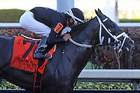 HALLANDALE BEACH, FL - FEBRUARY 11: Sharp Azteca (KY) #7 with jockey Edgar Zayas on board, wins the Hardacre Mile Gulfstream Park Handicap GII at Gulfstream Park on February 11, 2017 in Hallandale Beach, Florida. (Photo by Liz Lamont/Eclipse Sportswire/Getty Images)