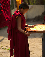 Buddhist student monk playing carrom, Sikkim, India