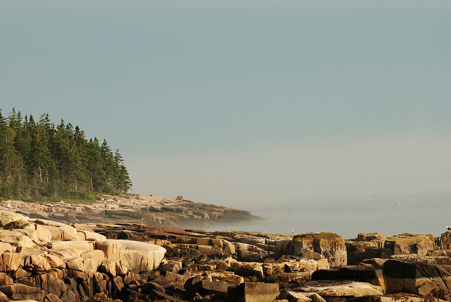 Acadia National Park<br /> Schoodic Point