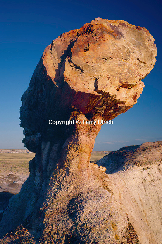 Pedestal logs<br /> Blue Mesa<br /> Petrified Forest National Park<br /> Colorado Plateau,  Arizona