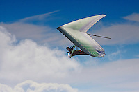 A man hang gliding over O'ahu.