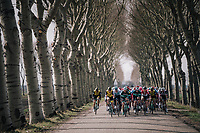 natural corridor for the peloton<br /> <br /> 106th Scheldeprijs 2018 (1.HC)<br /> 1 Day Race: Terneuzen (NED) - Schoten (BEL)(200km)