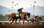 November 21, 2018: Improbable with Drayden Van Dyke works out at Santa Anita on November 21, 2018 in Del Mar, California. Evers/Eclipse Sportswire/CSM