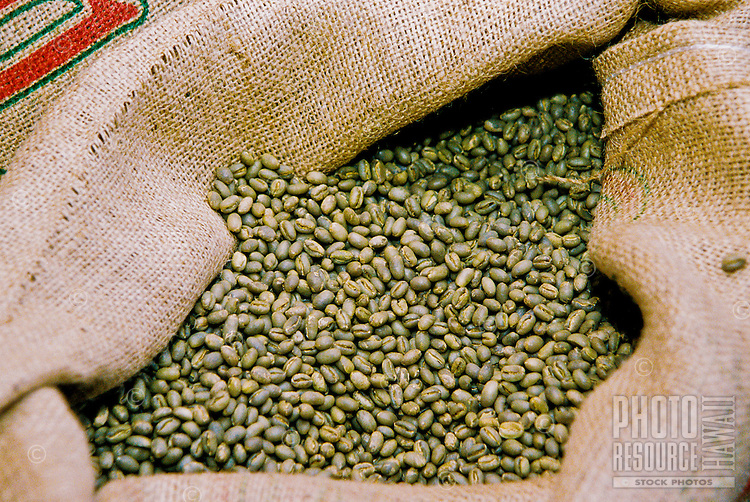 Raw Kona coffee beans ready for roasting