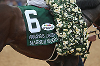 HOT SPRINGS, AR - APRIL 14: Magnum Moon #6, silks in  the Arkansas Derby at Oaklawn Park on April 14, 2018 in Hot Springs, Arkansas. (Photo by Justin Manning/Eclipse Sportswire/Getty Images)