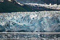 Hubbard Glacier is a glacier located in eastern Alaska, and part of Yukon, Canada. The glacier is named after Gardiner Hubbard. <br />
