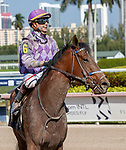 February 29, 2020: #6 Mister Candy Ride with jockey Corey Lanerie up breaks his maiden on Fountain of Youth Stakes Day on February 29th, 2020 at Gulfstream Park in Hallandale Beach, Florida. LizLamont/Eclipse Sportswire/CSM