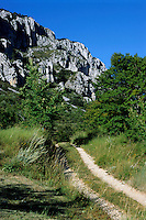 Dirt path leading to a rocky mountain, Seranon, Provence, France.