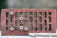 Wildbienen-Nisthilfe aus Bambus, Bambusstange, Bambusstangen, Bambus-Nisthilfe, Bambusstab, Bambusstäbe., die in einen Hohlziegel, Lochziegel gesteckt werden. Die Löcher des Ziegelstein sind für Wildbienen ungeeignet, da viel zu groß und hinten offen. Wildbienen-Nisthilfen, Wildbienen-Nisthilfe selbermachen, selber machen, Wildbienenhotel, Insektenhotel, Wildbienen-Hotel, Insekten-Hotel
