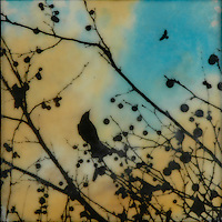Crow in branch silhouette against blue and orange sky mixed media encaustic painting
