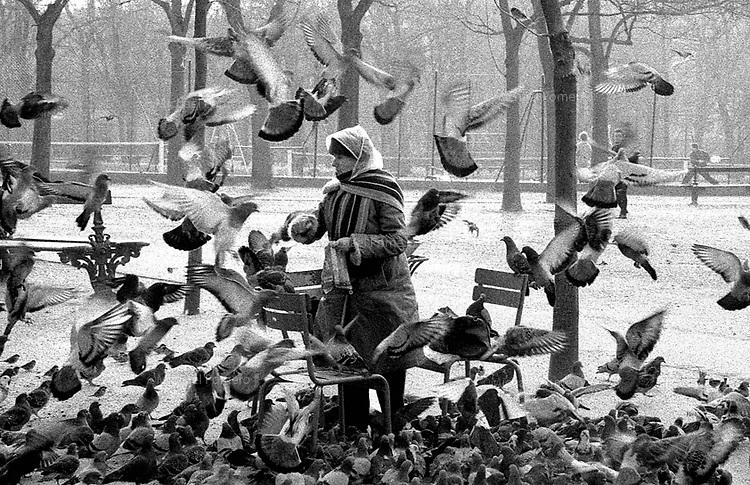 12.1998 <br /> <br /> Woman feeding pigeons in luxembourg garden.<br /> <br /> Femme nourissant les pigeons dans le jardin du luxembourg.