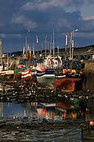 Europe/France/Bretagne/29/Finistère/Roscoff: Bateaux sur le port et lumière d'orage