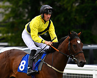 Mullion Star ridden by Tim Clark goes down to the start during Ladies Evening Racing at Salisbury Racecourse on 15th July 2017