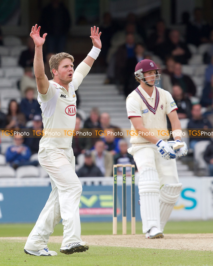 Stuart Meaker, Surrey CCC appeals against Craig Meschede, Somerset CCC - Surrey CCC v Somerset CCC - LV County Championship, Division1 cricket at The Kia Oval - 18/05/12 - MANDATORY CREDIT: Ray Lawrence/TGSPHOTO - Self billing applies where appropriate - 0845 094 6026 - contact@tgsphoto.co.uk - NO UNPAID USE.