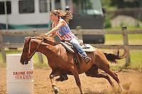 Horse Show 071915