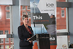ICE State of the Nation 2014