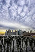 New York City Skyline (Color - Vertical) Brooklyn Bridge Park