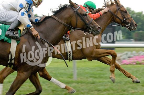 Globo de Oro winning at Delaware Park on 6/27/11