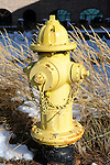Yellow fire hydrant with brown grass Castel Rock Colorado, yellow fire hydrant, Colorado, US State of Colorado, Rocky Mountain region,   Rocky Mountain region, Coloradans, US State of Colorado, State of Colorado, Colorado, Rocky Mountain region, Southwestern Region of USA, Denver, Coloradan,  Colorado River, Grand Junction, Colorado, CO, CR, Colarado, Colo, Col, CAL, CLD, Photography history, Stock Photography, Fine Art Photography, Fine Art Photography by Ron Bennett, Fine Art, Fine Art photography, Art Photography, Copyright RonBennettPhotography.com ©