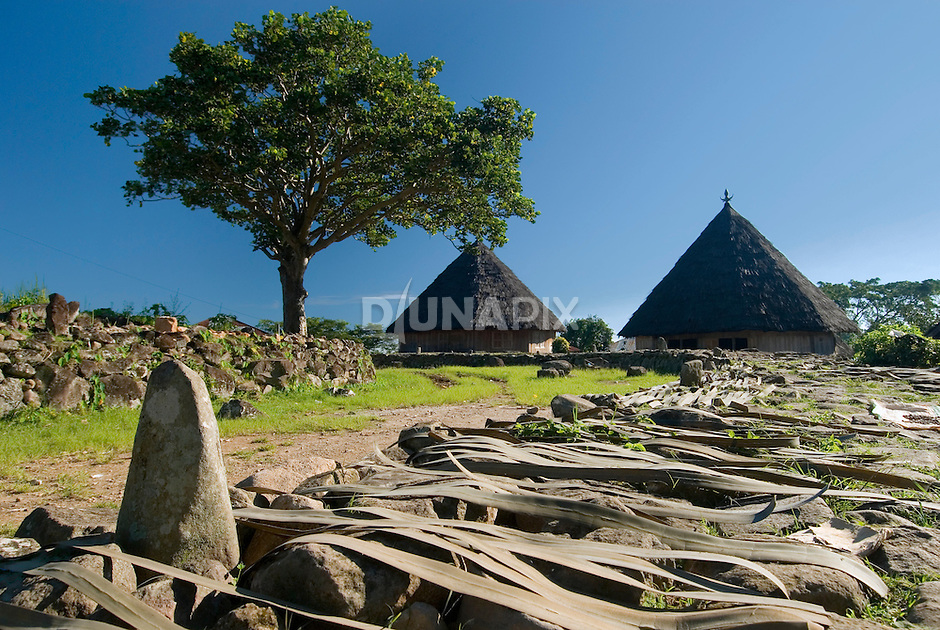 Traditional village, Ruteng, Manggarai, Flores