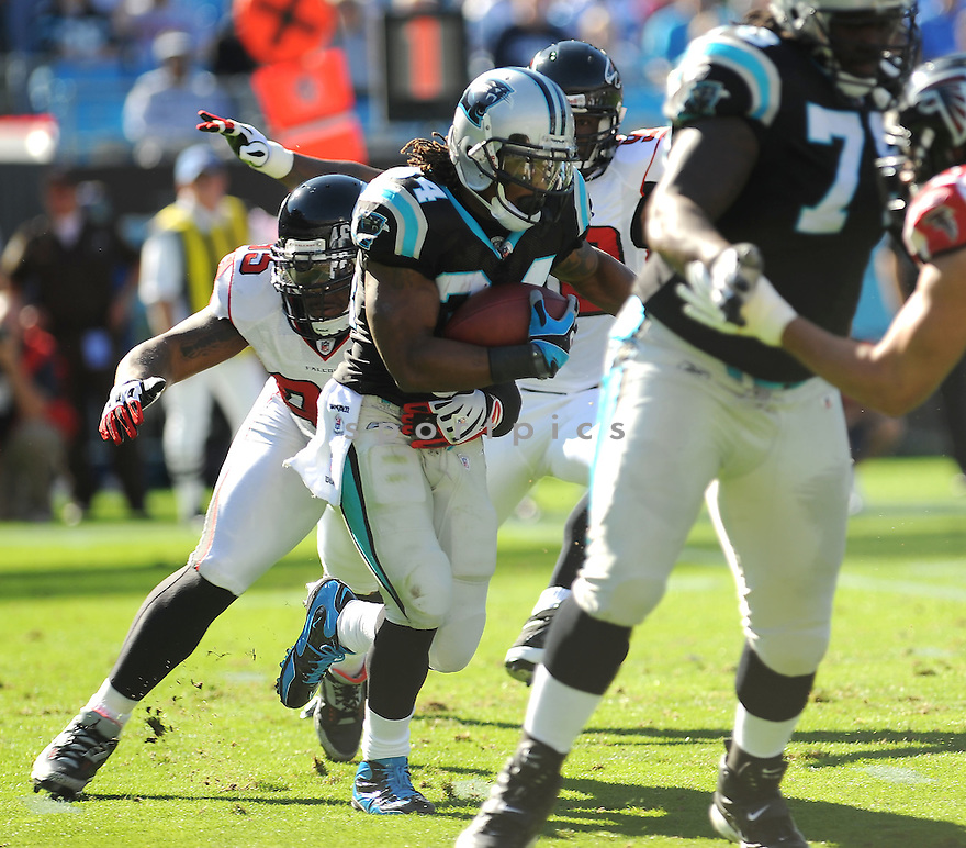 DEANGELO WILLIAMS, of the Carolina Panthers, in action during the Panthers game against the Atlanta Falcons on November 15, 2009 in Charlotte, NC. Panthers won 28-19