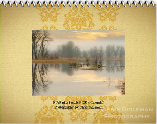"Cover of the 2012 Birds of a Feather Calendar.  The cover photo is called ""Lazy afternoon in the refuge. and shows reflections of the bare trees and cloudy, colored sky is seen in the mirror surface of a lake with Canada Geese and Trumpeter Swans resting in Winter in the Ridgefield National Wildlife Refuge."