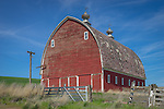The Palouse, Whitman County, Washington: Red barn with round roof