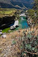 Tara river, Sinjajevina region, Montenegro, Europe