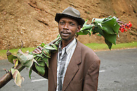 Rwanda. Western province. Village of Utarare Wa Ndaba. Hutu man carries on his right shoulder a banana tree with flowers. Concrete road. © 2007 Didier Ruef