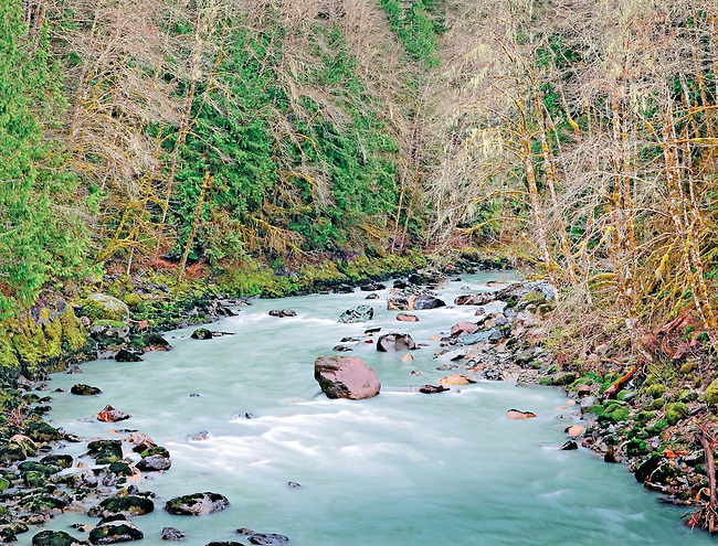 early spring creek North Cascades Washington State