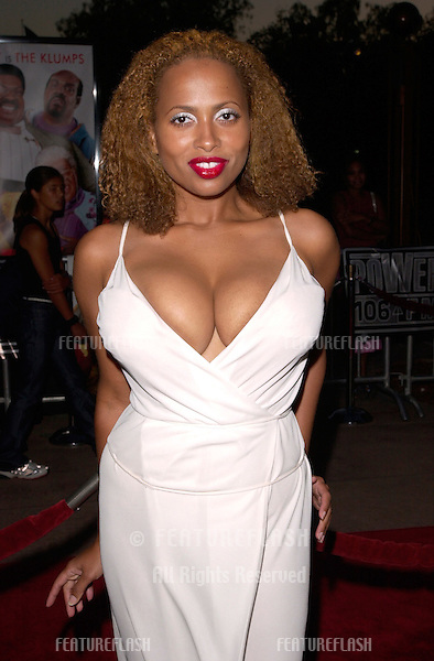 Ally McBeal star LISA NICOLE CARSON at the world premiere, at the Universal Amphitheatre Hollywood, of Nutty Professor II: The Klumps.