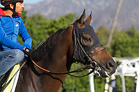 Game On Dude for trainer Bob Baffert at Santa Anita Park in Arcadia California