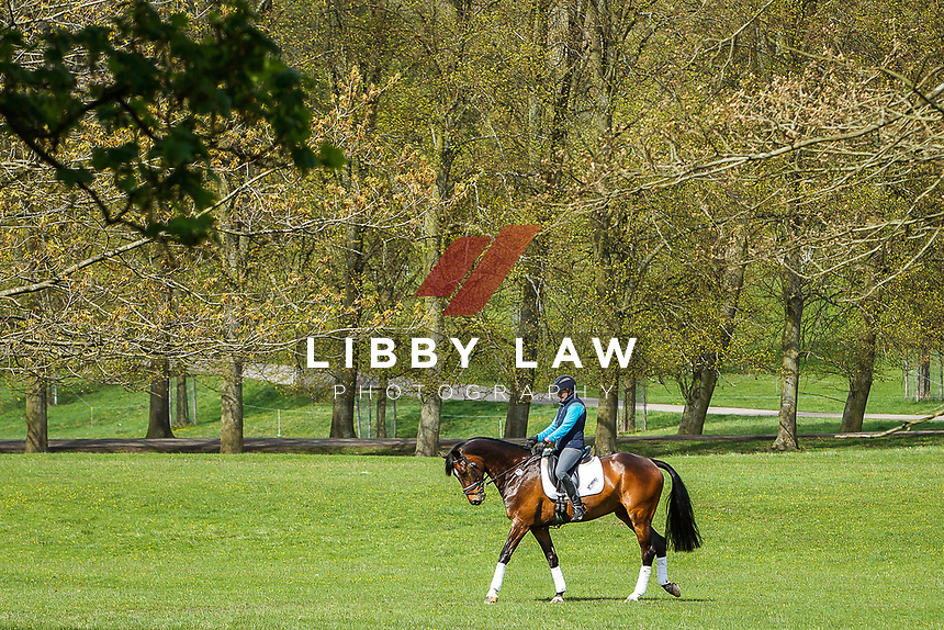 2013 GBR-Chatsworth International Horse Trials. Friday 10 May. Copyright Photo: Libby Law Photography