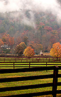 Low-hanging clouds hug the autumn trees over a farm in Banner Elk, North Carolina.