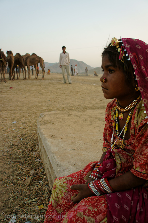 girl watching camel fair in holy city Pushkar at sunset time