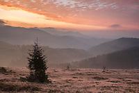 Ranca, Transylvania, Romania