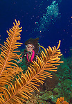8 July 2013: SCUBA diver Sally Herschorn explores Spanish Bay Reef, off the North Shore of Grand Cayman Island.  Located in the British West Indies in the  Caribbean, the Cayman Islands are renowned for excellent scuba diving, snorkeling, beaches and banking.  Mandatory Credit: Ed Wolfstein Photo