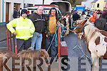 Pictured at the Fair Day in Athea on Saturday were L-R : John O'Connor of Kilcolman, James Hartnett of Abbeyfeale and Donie White of Athea pictured with horses for sale on the day.