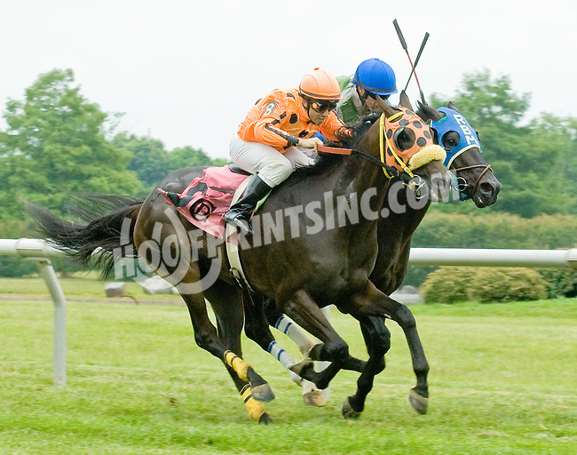 Momma's Happy winning at Delaware Park on 6/17/12