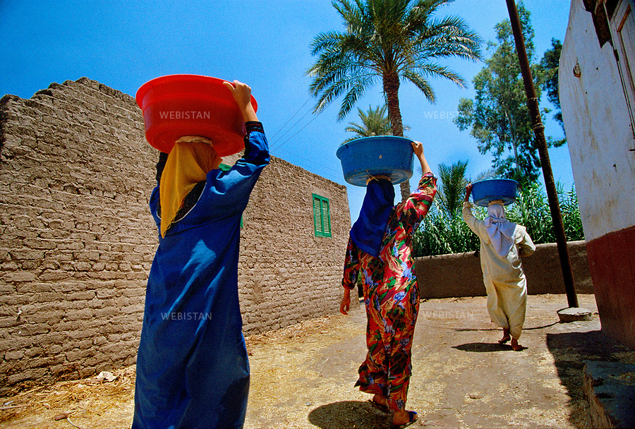 1996. Egypt. Nile delta. El-Qaramus. During the manufacturing process of papyrus paper, women carry basins of water to moisten the strips of papyrus. Egypte. Delta du Nil. El-Qaramus. Lors du processus de fabrication du papier de papyrus, des femmes transportent des bassines d'eau pour humidifier les lamelles de papyrus.