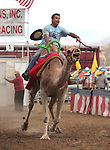 Charlie Dillon competes on media day at the International Camel Races in Virginia City, Nev., on Friday afternoon, Sept. 7, 2012. The 53rd annual event continues Saturday at 1 p.m. and at noon on Sunday..Photo by Cathleen Allison