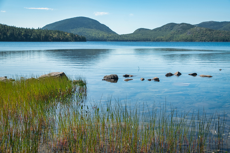 Eagle Lake, one of the bigger lakes on Mt. Desert Island, is surrounded by forests of beech and birch trees.