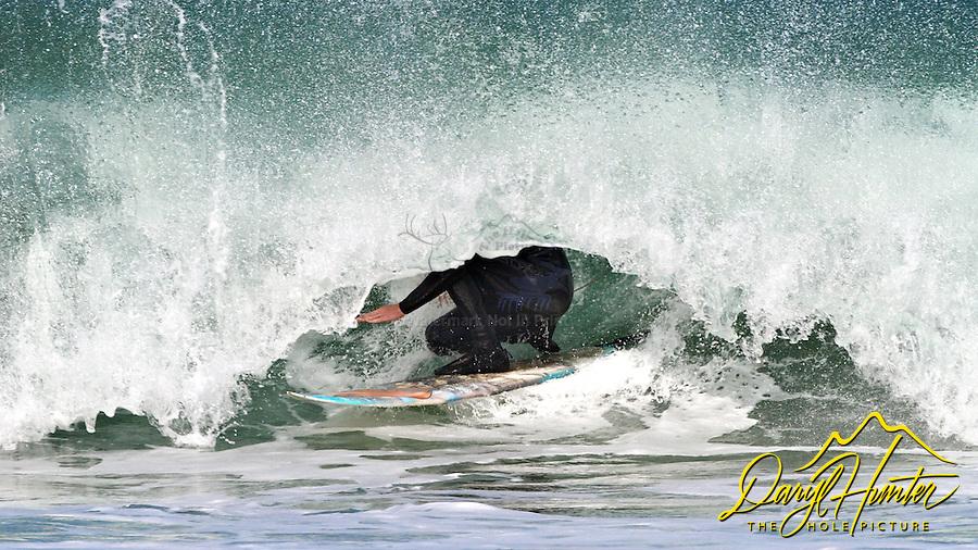 Surfer,  Locked in Curl, Morro Bay, San Luis Obispo county, California